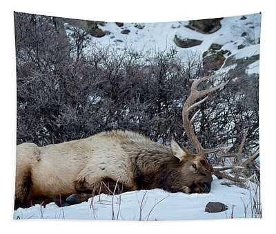 Sleeping Elk Tapestry