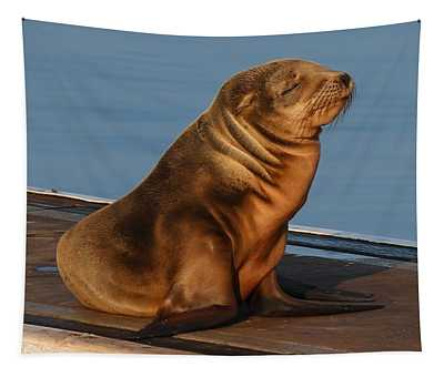Sleeping Wild Sea Lion Pup  Tapestry