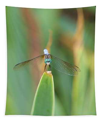 Smiling Dragonfly Tapestry