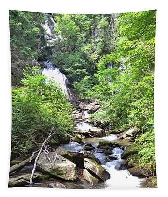 Smith Creek Downstream Of Anna Ruby Falls - 3 Tapestry