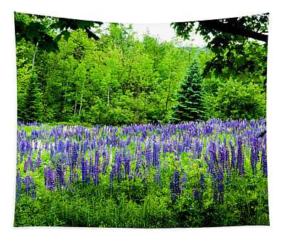 Sneaking Up On Lupines Tapestry