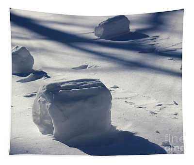 Snow Roller Trio In Shadows Tapestry