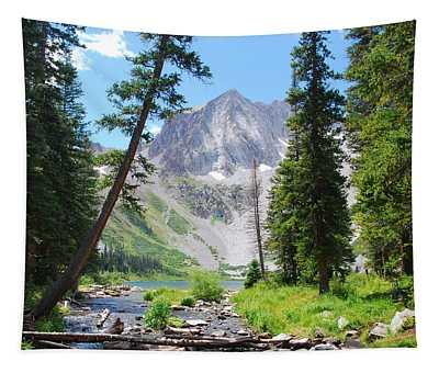 Snowmass Peak Landscape Tapestry