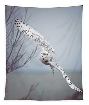 Wings Tapestries