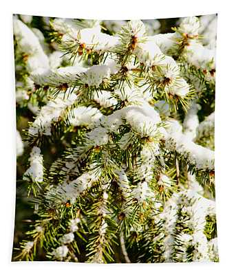 Snowy Pines Tapestry