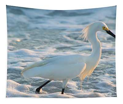Snowy Siesta Key Sunset Tapestry
