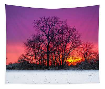 Snowy Sunset Tapestry