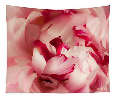 Soft Peony Tapestry