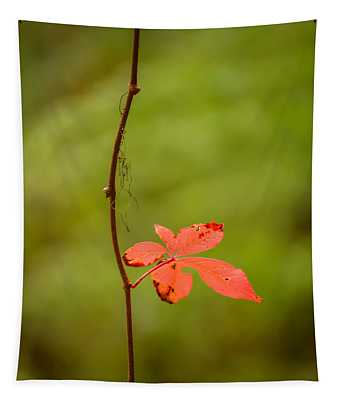 Solitary Red Leaf Tapestry