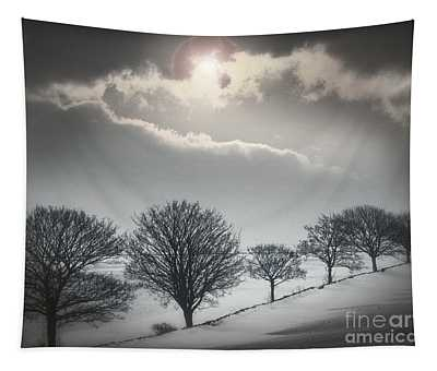 Solitude Of Coldness Tapestry