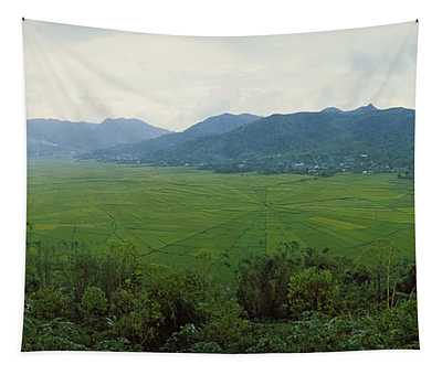 Spider Web Rice Field, Flores Island Tapestry