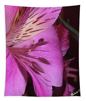 Splendid Beauty Tapestry