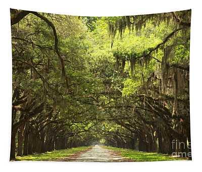 Splendid Oak Drive Tapestry
