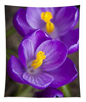 Spring Crocus Tapestry