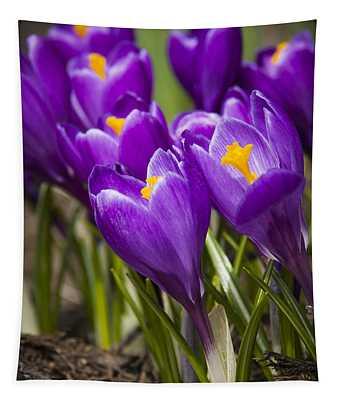 Spring Crocus Bloom Tapestry