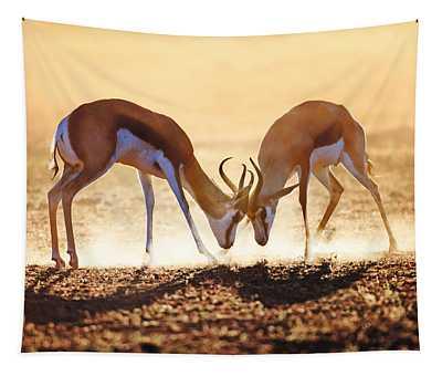 Springbok Dual In Dust Tapestry