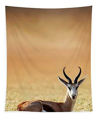 Springbok Resting On Green Desert Grass Tapestry