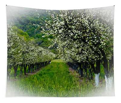Springtime In The Orchard Tapestry