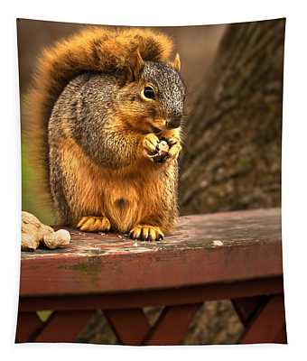 Squirrel Eating A Peanut Tapestry