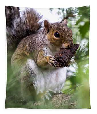 Squirrel With Pine Cone Tapestry