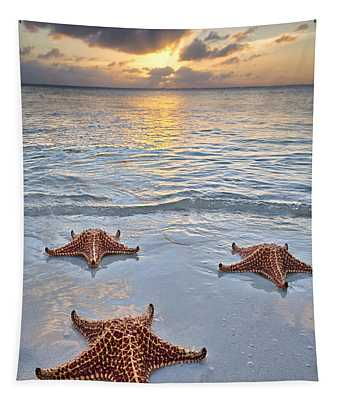 Starfish Beach Sunset Tapestry