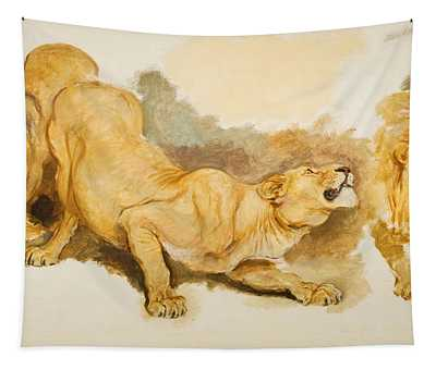 Study For Daniel In The Lions Den Tapestry