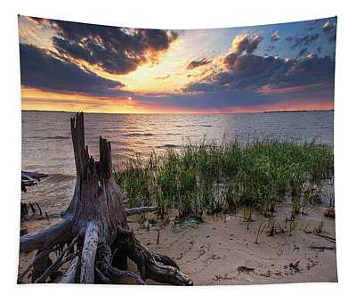Stumps And Sunset On Oyster Bay Tapestry