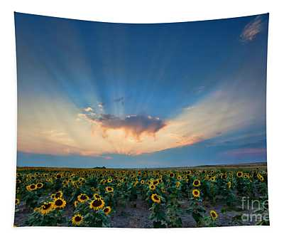 Sunflower Field At Sunset Tapestry
