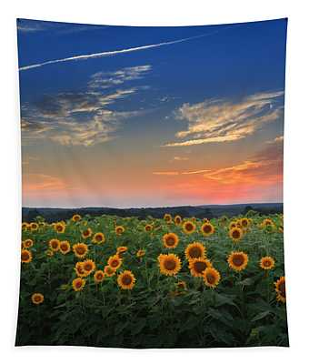 Sunflowers In The Evening Tapestry