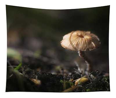 Sunlit Mushroom Tapestry