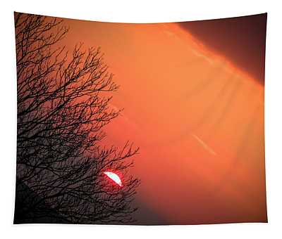 Tapestry featuring the photograph Sunrise And Hibernating Tree by James Truett