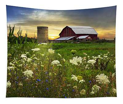 Sunset Lace Pastures Tapestry
