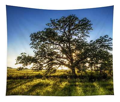 Sunset Oak Tapestry