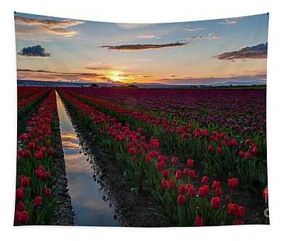 Sunset Reflection Seam Tapestry