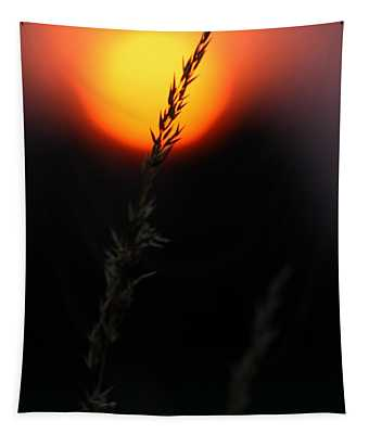 Sunset Seed Silhouette Tapestry