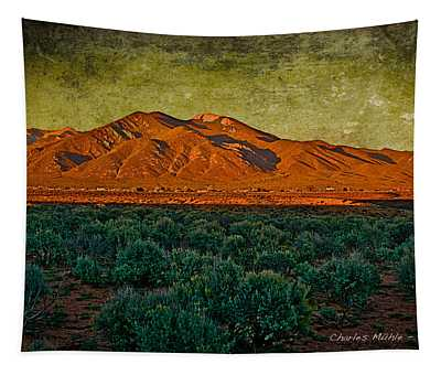 Sunset V Tapestry
