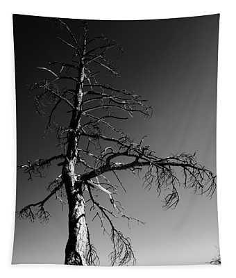 Survival Tree Tapestry