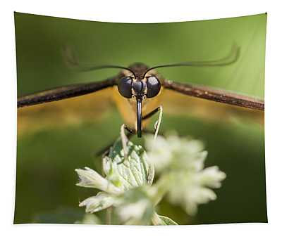 Swallowtail Butterfly Tapestry