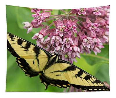 Swallowtail Notecard Tapestry