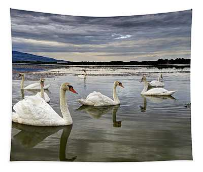 Swans Tapestry