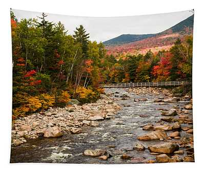 Swift River Painted With Autumns Paint Brush Tapestry