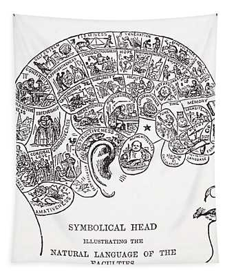 Symbolical Head Showing The Natural Tapestry