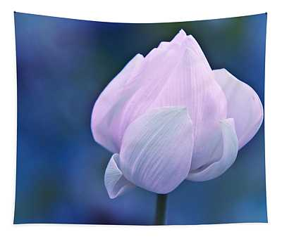 Tender Morning With Lotus Tapestry