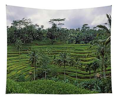 Terraced Rice Field, Bali, Indonesia Tapestry