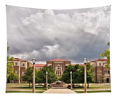 Tapestry featuring the photograph School Of Education by Mae Wertz