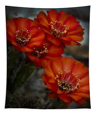The Beauty Of Red Tapestry