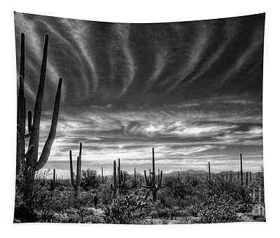 The Desert In Black And White Tapestry