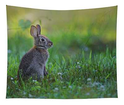 The Eastern Cottontail Tapestry
