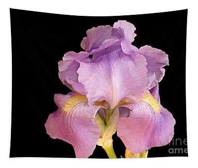 The Iris In All Her Glory Tapestry