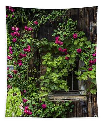 The Old Barn Window Tapestry